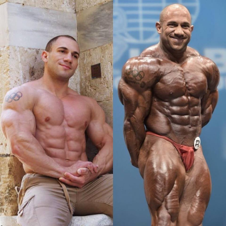 A Review of The Muscle Maximizer Program