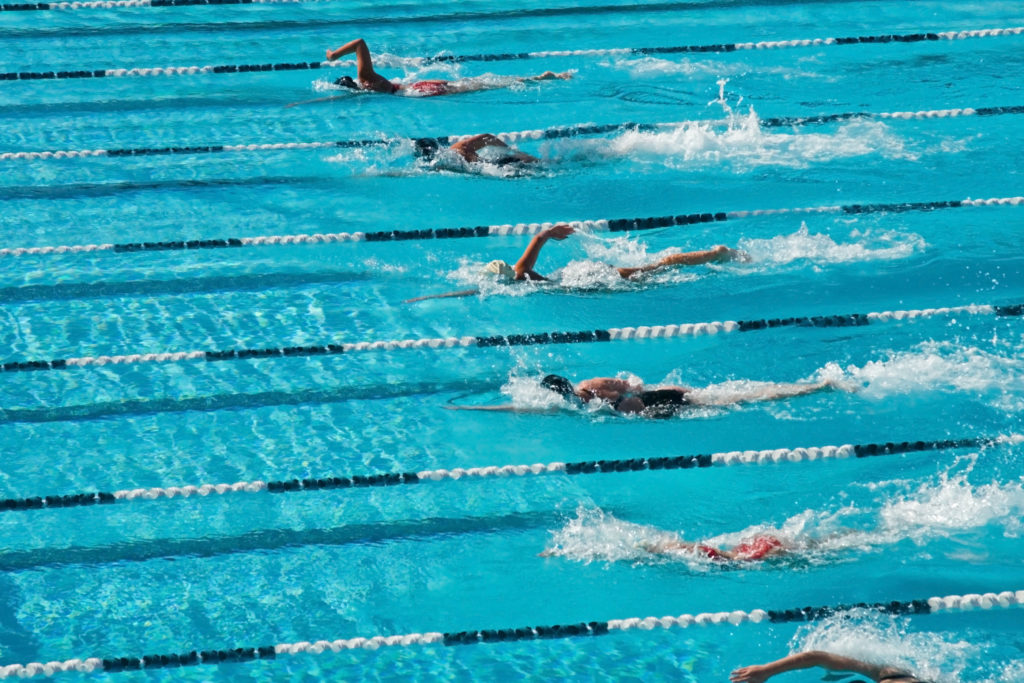 Make Sure to Buy the Right Swimming Pool Chemicals in Miami