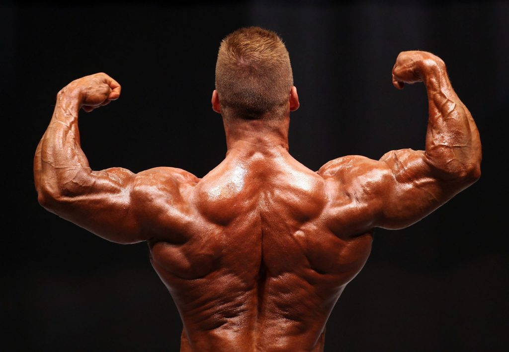Practical Application Of Boldenone 200 Steroid