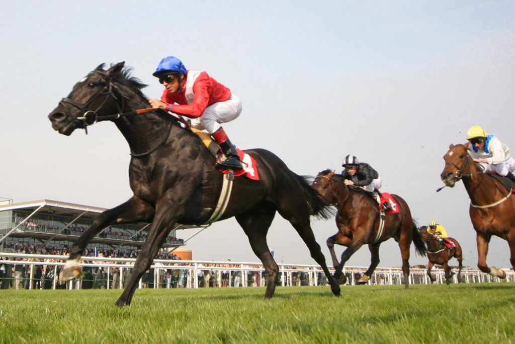 Some Best Horse Racing Tips to Earn More And Losing Less