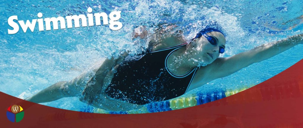 Swimming Pool Fencing And How Important They Are