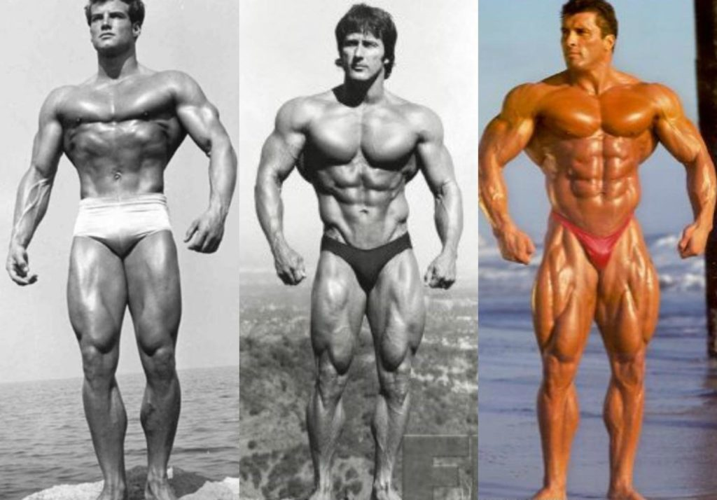 What Builds Muscle - Say Hello to Your Dream Physique